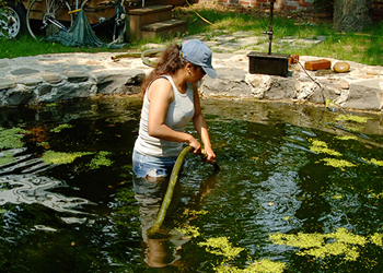 Water Gardening <em>Photo Gallery